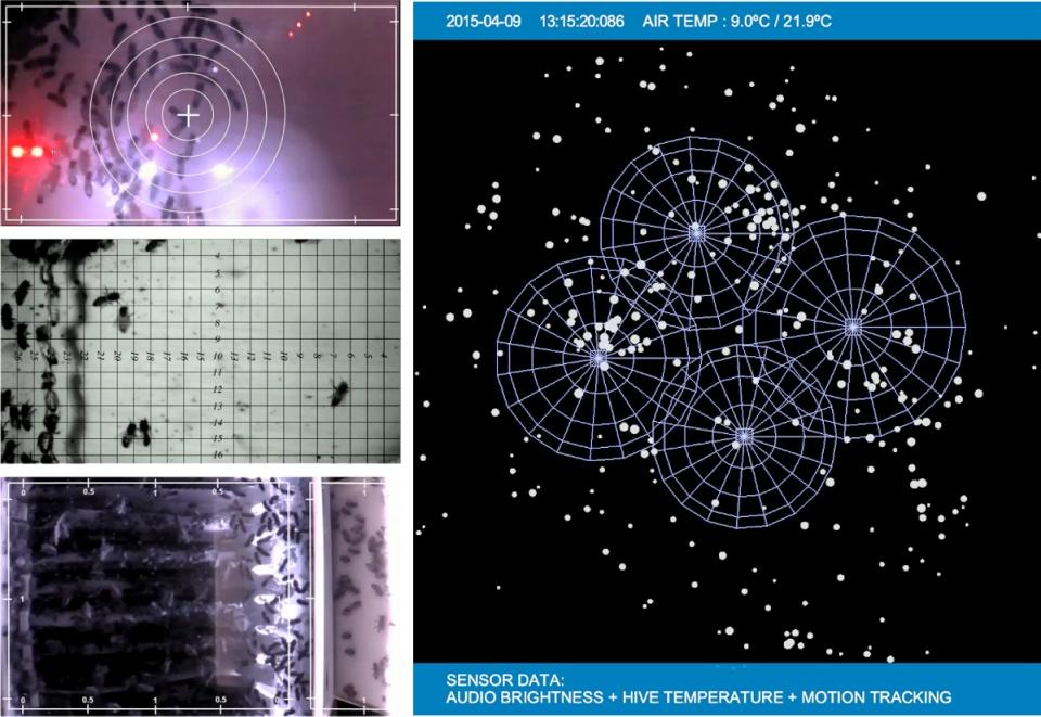 observationvisualization-2