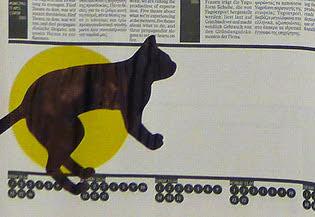 Greek cat - BachliTzanakou