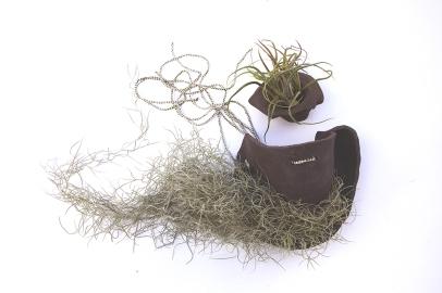 comme-l'herbe-pousse-4-bWebComm