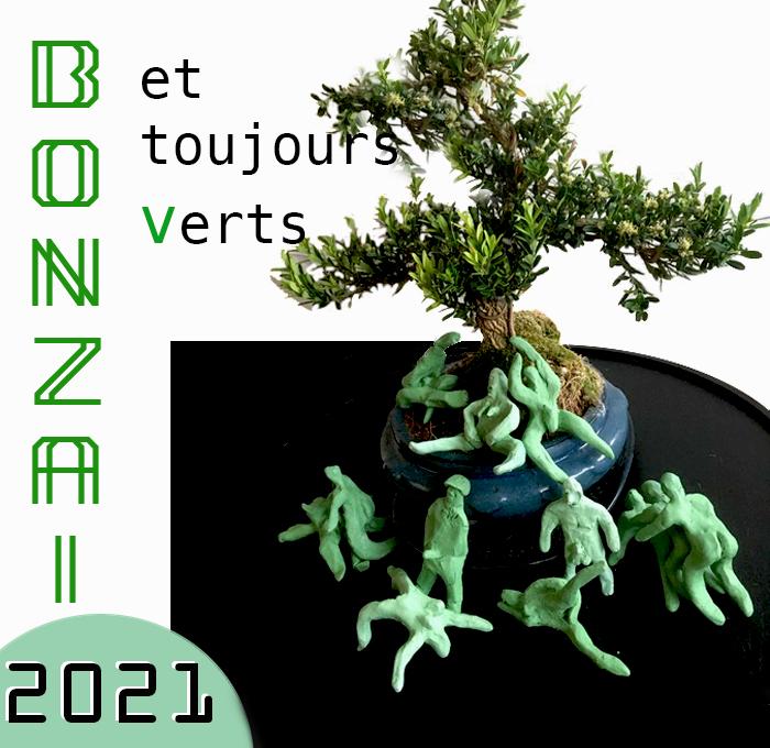 Bonzai2